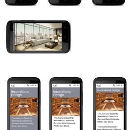 Mobile Design Choices